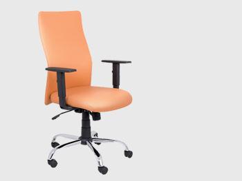 Biuro kėdė | CLASSIC